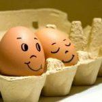 ძუძუმწოვრების ლაყე კვერცხებიდან წიწილები არ იჩეკება